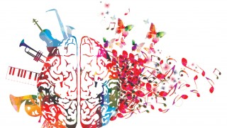 musique cerveau instrument artwork note neuroscience